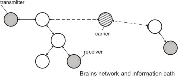 Neuromantics - A theory on a different pattern of neural communication